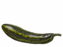 "1 Dozen - 8"" Weighted Artificial Zucchini"