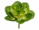 1 Dozen Artificial Cabbage Plants With Stem