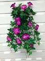 1 Dozen - UV Protected Morning Glory Hanging Flower Bushes