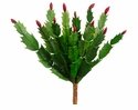 """10"""" Artificial Christmas Cactus With Red Buds"""