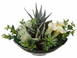 "12"" Artificial  Donkey Tail Succulent, Aloe, Bromeliad Plant Arrangement in Designer Oval Plate"