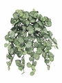 "13"" Artificial Saxifraga Hanging Silk Bush with 231 Leaves - Set of 12"