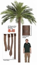 15' Artificial Phoenix Palm Tree - Fire Retardant