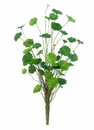 "18.5"" Artificial Pennywort Bush Plant - Set of 12"