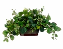 "18"" Artificial Peperomia and Tea Leaf Ledge Plant in Metal Container"