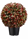 """18"""" Artificial Plastic Italian Bay Leaf Ball Topiary Plant in Pot - Set of 2"""