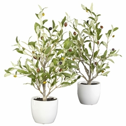 "18"" Olive Silk Tree w/Vase (Set of 2)"