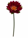 "19.5"" Silk Lotus Spray Stem - Set of 24 (Shown in Beauty)"