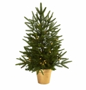 2.5� Christmas Tree w/Golden Planter & Clear Lights
