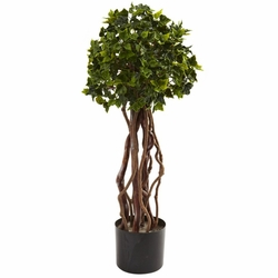 2.5� English Ivy Topiary UV Resistant (Indoor/Outdoor)
