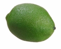 """2.7"""" Artificial Limes - Set of 12"""