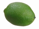 "2.7"" Artificial Limes - Set of 12"