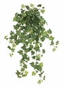 "23"" Artificial Lace Ivy Hanging Bush with 215 Leaves - Set of 6"