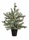 "24"" Artificial Pine Tree Frosted - Set of 2"