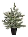 """24"""" Artificial Pine Tree Frosted - Set of 2"""