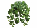 "24"" Artificial Pothos Silk Hanging Bush - Set of 12"