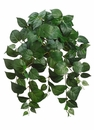 "24"" Artificial Silk Philodendron Hanging Bush - Set of 12"