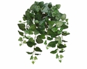 "24"" Artificial Swedish Ivy Silk Bush - Set of 12"