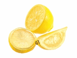 24 Bags of Cut Artificial Lemons (3 per bag)