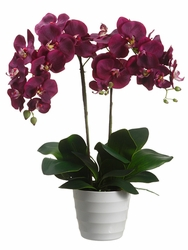 "26"" artificial Silk Phalaenopsis Orchid Plant in Plastic Pot - Set of 2 (shown in Orchid)"