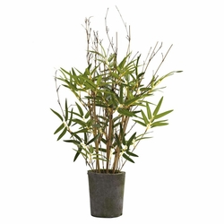 27� Bamboo Tree w/Cement Pot