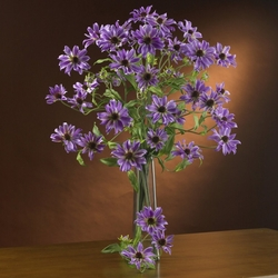 "28.5"" Cosmo Silk Flower Stems (Set of 12) - Purple"