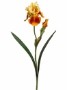 "28"" Artificial Silk Bearded Iris Spray Stem - Set of 12 (shown in yellow/brown)"