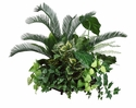 "28"" Artificial Cycas Palm, Dracaena & Pothos Silk Plant Arrangement"