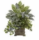 28� Mixed Silver Queen, Wandering Jew & Fittonia w/Planter