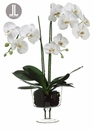 "29"" Artificial Phalaenopsis Orchid Plant Arrangement in Glass Vase"