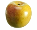 "3.25"" Artificial Weighted Gala Apple - Set of 12"