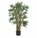 3' Biggy Bamboo Silk Tree