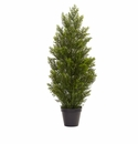3� Mini Cedar Pine Tree (Indoor/Outdoor)