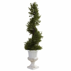 3� Rosemary Spiral w/Urn (Indoor/Outdoor)