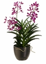 "30"" Artificial Pannee Vanda Orchid Plant Arrangement in Ceramic Pot"