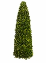 "30"" Preserved Boxwood Cone Topiary"