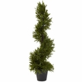30� Rosemary Spiral Tree (In-Door/Out-Door)
