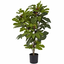 "32"" Fig Tree with 42 Leaves & 15 Figs"
