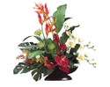 "34"" Artificial Heliconia/Orchid/Protea Arrangement in Oval Container"