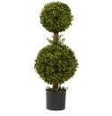 35� Double Boxwood Topiary