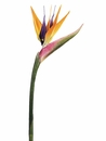 "37"" Artificial Bird of Paradise Flower Spray  (shown in white) - Set of 6"