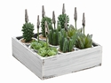 "4.5"" Artificial Succulent Garden Name Card Holder (9 each box/2 Wood Boxes)"