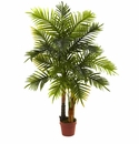 4� Areca Palm Tree (Real Touch)