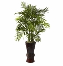 4� Areca with Decorative Bamboo Planter