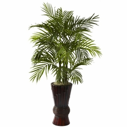 4' Areca with Decorative Bamboo Planter