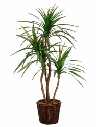 4' Artificial Yucca Tree in Willow Basket