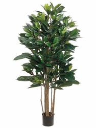 4' Polynesian Artificial Ficus Trees - Set of 2