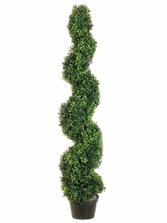 4' Pond Boxwood Spiral Topiary in Plastic Pot - Set of 2