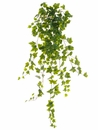"40"" Artificial Ivy Hanging Bush- Set of 4"
