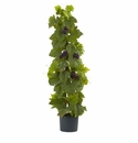 40� Grape Leaf Deluxe Climbing Plant